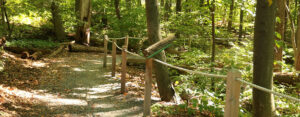 The Sensory Trail at Broad Meadow Brook features a rope-and-post guide system and 14 stops with interpretive information. Broad Meadow Brook is one of several Mass Audubon wildlife sanctuaries that features a universally-accessible All Persons Trail.