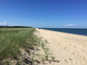Cape Poge's secluded barrier beach stretches far into the distance of the 516 acre refuge. Photo/The Trustees of Reservations