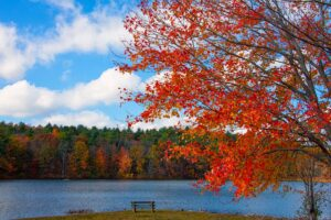 From late September to late October, Massachusetts and the other New England states offer beautiful fall foliage for visitors to enjoy.